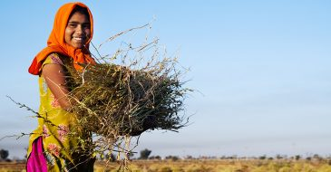 Women's Wage Employment in Developing Countries: Regulatory Barriers and Opportunities